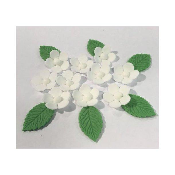Femblads blomst 10 stk. - hvid