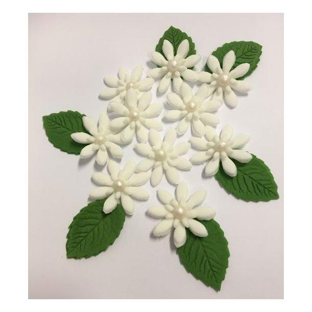 Medium spidsbladede blomster - Hvide 10 stk. med lidt blade og perle i centrum