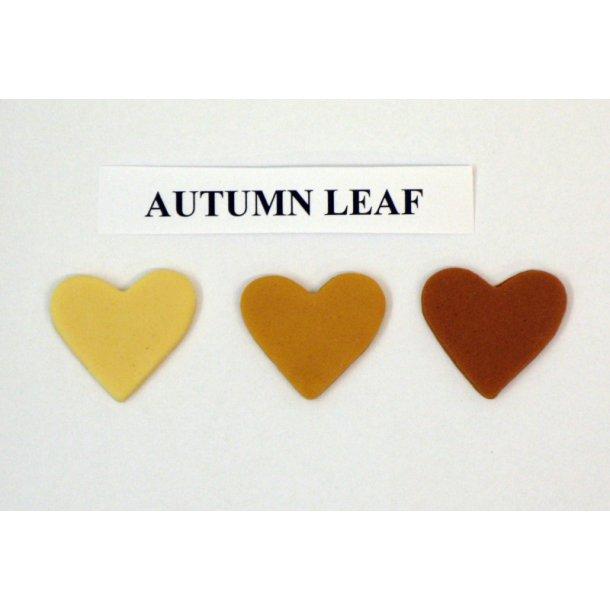 Autumn leaf pastafarve 25g